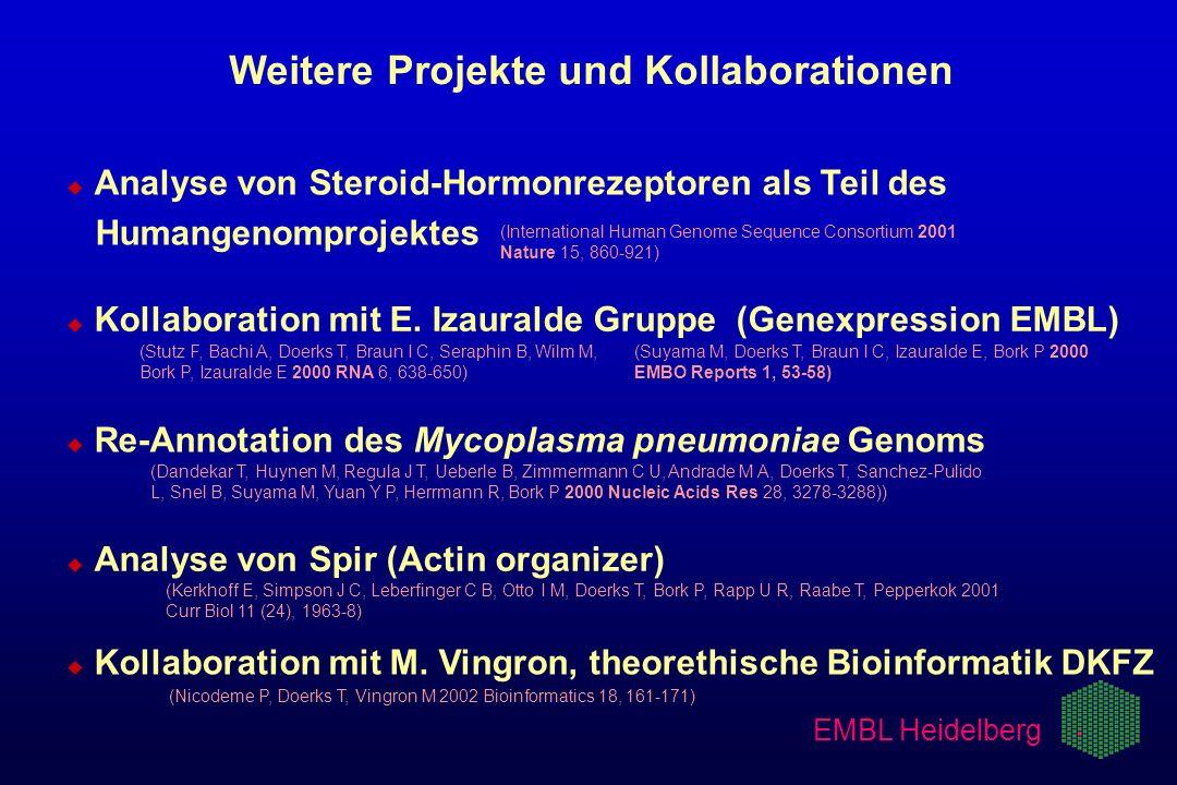 EMBL Heidelberg Weitere Projekte und Kollaborationen u u Analyse von Steroid-Hormonrezeptoren als Teil des Humangenomprojektes (International Human Ge