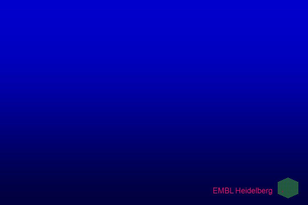EMBL Heidelberg