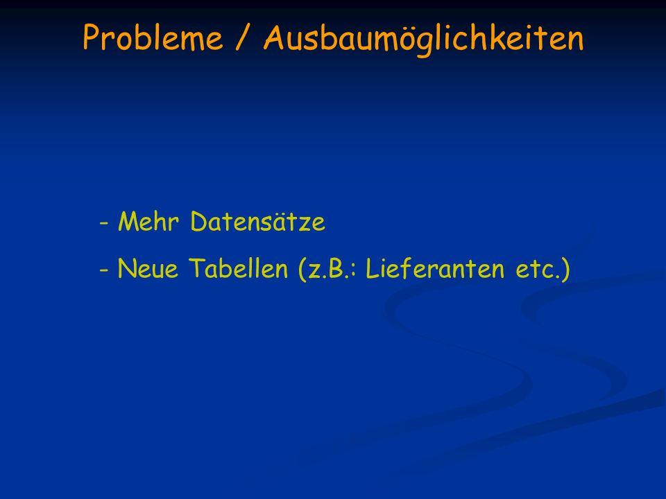 Probleme / Ausbaumöglichkeiten - Mehr Datensätze - Neue Tabellen (z.B.: Lieferanten etc.)