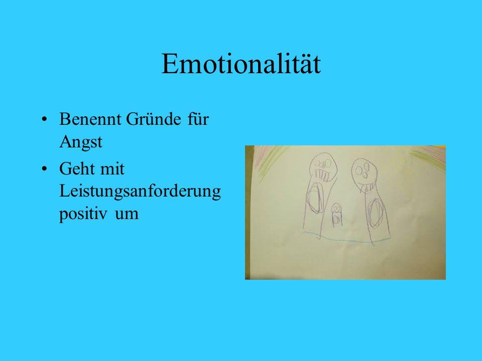 Emotionalität Benennt Gründe für Angst Geht mit Leistungsanforderung positiv um