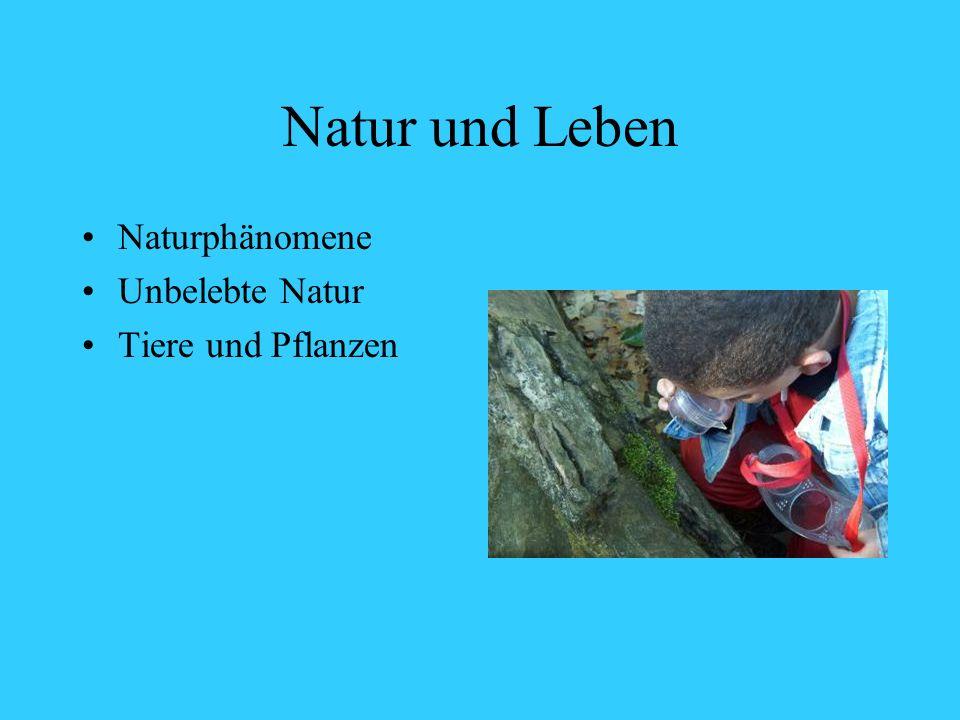Natur und Leben Naturphänomene Unbelebte Natur Tiere und Pflanzen