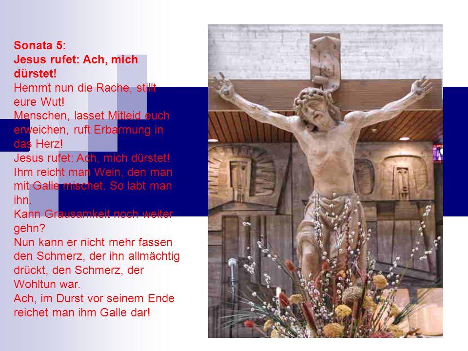 Sonata 5: Jesus rufet: Ach, mich dürstet! Hemmt nun die Rache, stillt eure Wut! Menschen, lasset Mitleid euch erweichen, ruft Erbarmung in das Herz! J