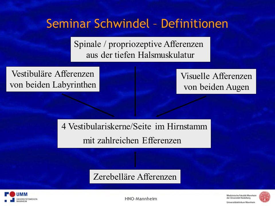 HNO-Mannheim Seminar Schwindel – Definitionen 4 Vestibulariskerne/Seite im Hirnstamm mit zahlreichen Efferenzen Vestibuläre Afferenzen von beiden Laby
