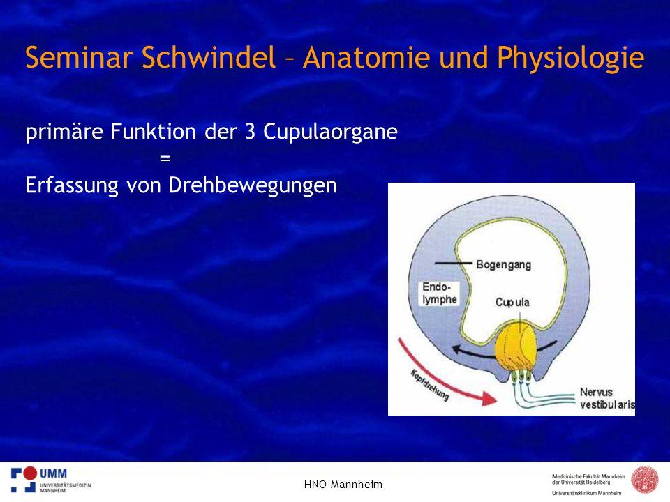 HNO-Mannheim Seminar Schwindel – Anatomie und Physiologie primäre Funktion der 2 Maculaorgane = Erfassung der Kopfposition relativ zur Gravitation und Erfassung von Beschleunigungen