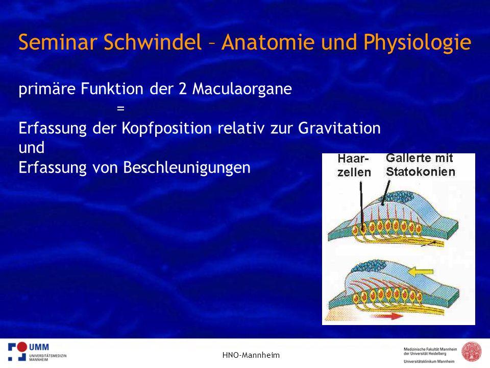 HNO-Mannheim Seminar Schwindel – typische Diagnosen Benigner paroxysmaler Lagerungsschwindel Synonym: Cupulolithiasis Pathogenese: herausgelöste Otolithen aus der Macula utriculi sammeln sich im hinteren Bogengang auf der Cupula
