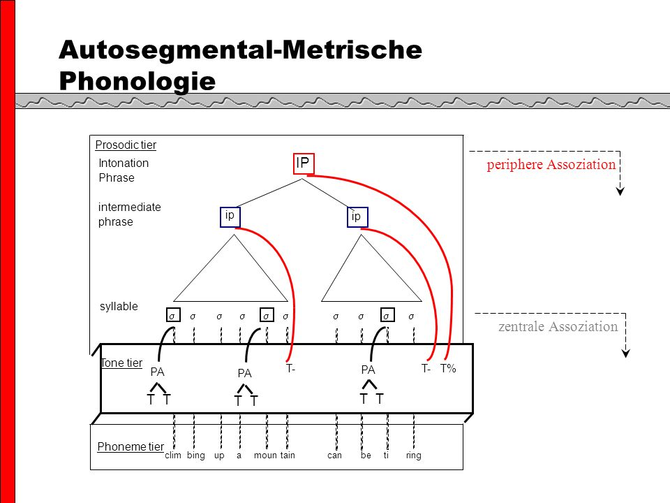 Autosegmental-Metrische Phonologie zentrale Assoziation periphere Assoziation Tone tier ip Prosodic tier syllable T- T- T% PA T ip PA T IP Intonation Phrase intermediate phrase Phoneme tier climbingupamountaincan ti ringbe PA T