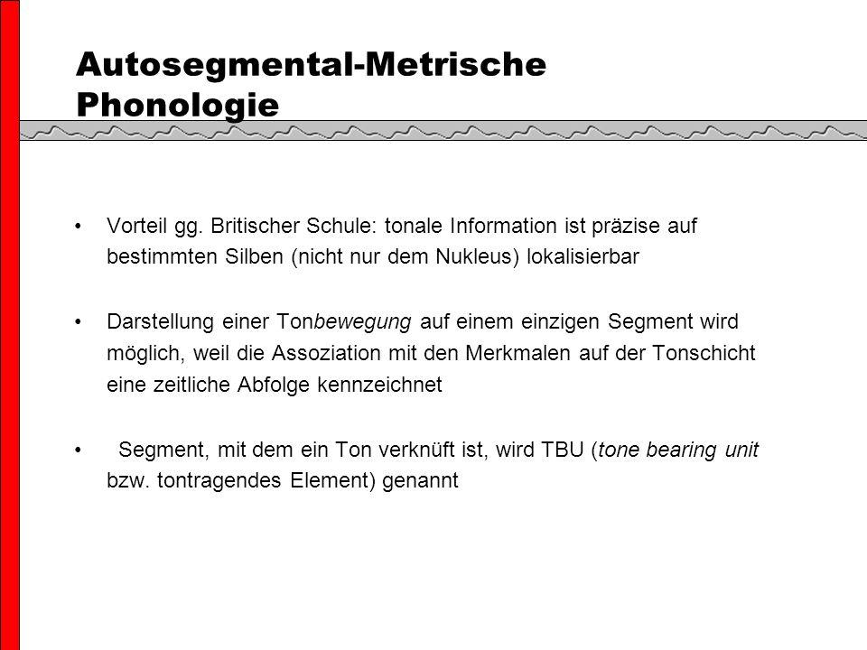 Autosegmental-Metrische Phonologie Vorteil gg.