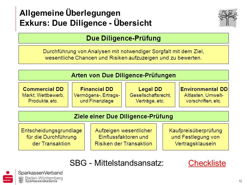 Sparkassenakademie 12 Durchführung von Analysen mit notwendiger Sorgfalt mit dem Ziel, wesentliche Chancen und Risiken aufzuzeigen und zu bewerten. Du