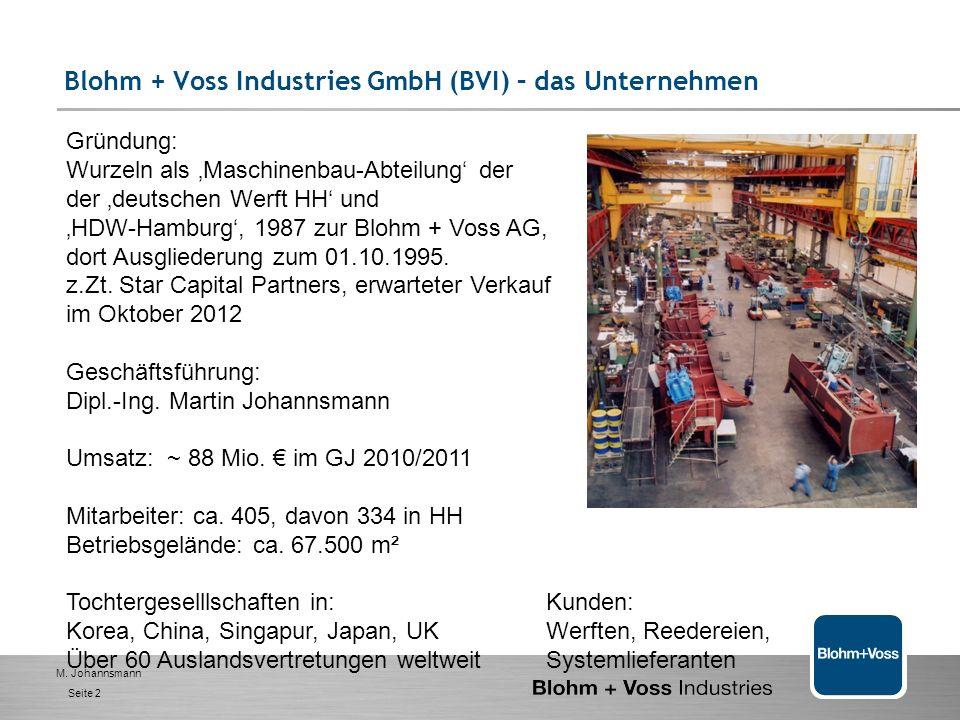M. Johannsmann Seite 1 Wertschöpfungs-orientierte Organisation 1. BVI- das Unternehmen 2. Management - Selbstverständnis und Ziele 3. Handlungsfelder-