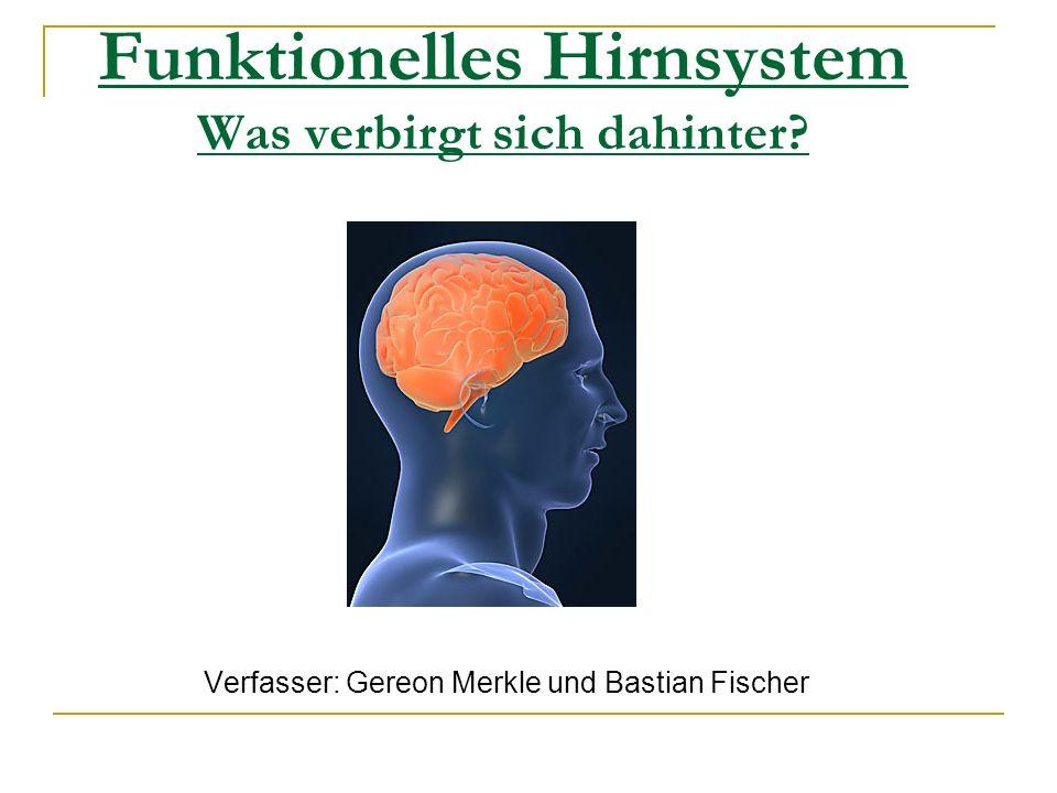 Funktionelles Hirnsystem Was verbirgt sich dahinter? Verfasser: Gereon Merkle und Bastian Fischer