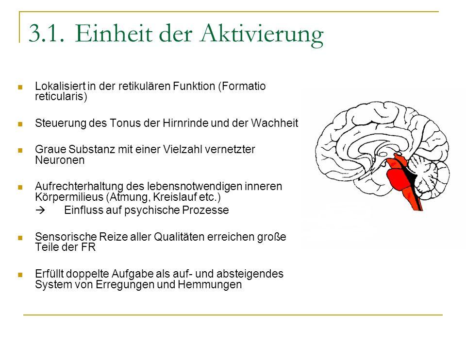 3.1.Einheit der Aktivierung Lokalisiert in der retikulären Funktion (Formatio reticularis) Steuerung des Tonus der Hirnrinde und der Wachheit Graue Su