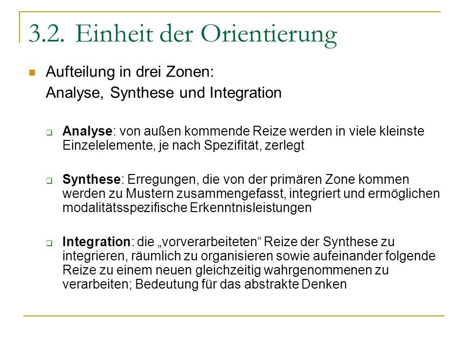 3.2.Einheit der Orientierung Aufteilung in drei Zonen: Analyse, Synthese und Integration Analyse: von außen kommende Reize werden in viele kleinste Ei