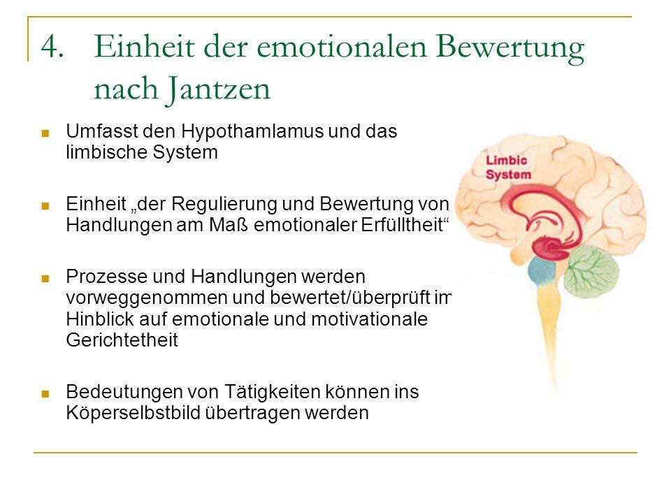 4.Einheit der emotionalen Bewertung nach Jantzen Umfasst den Hypothamlamus und das limbische System Einheit der Regulierung und Bewertung von Handlung