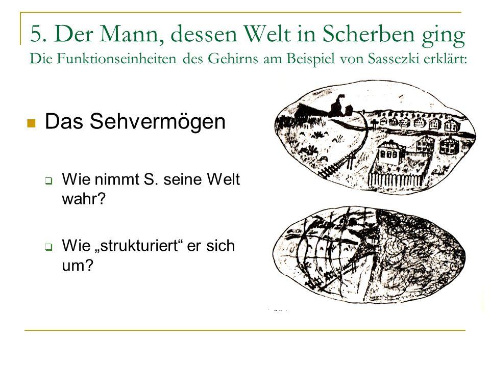 5. Der Mann, dessen Welt in Scherben ging Die Funktionseinheiten des Gehirns am Beispiel von Sassezki erklärt: Das Sehvermögen Wie nimmt S. seine Welt