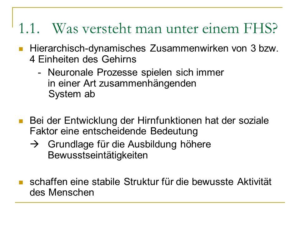 1.1. Was versteht man unter einem FHS? Hierarchisch-dynamisches Zusammenwirken von 3 bzw. 4 Einheiten des Gehirns -Neuronale Prozesse spielen sich imm