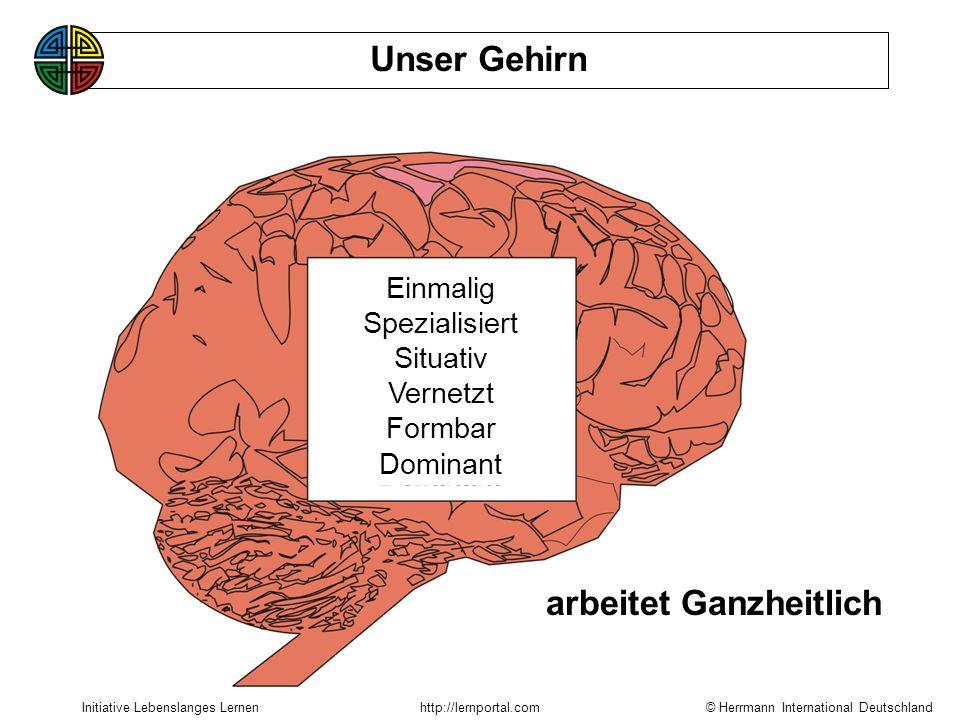 © Herrmann International Deutschland Initiative Lebenslanges Lernenhttp://lernportal.com arbeitet Ganzheitlich Unser Gehirn Einmalig Spezialisiert Situativ Vernetzt Formbar Dominant