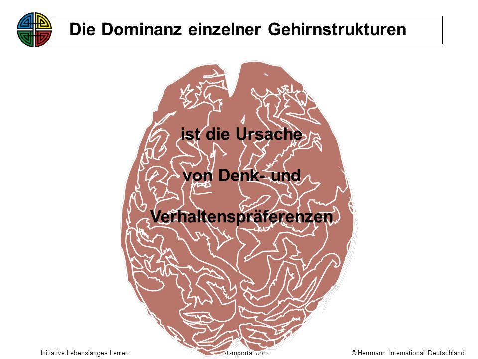 © Herrmann International Deutschland Initiative Lebenslanges Lernenhttp://lernportal.com Die Dominanz einzelner Gehirnstrukturen ist die Ursache von Denk- und Verhaltenspräferenzen
