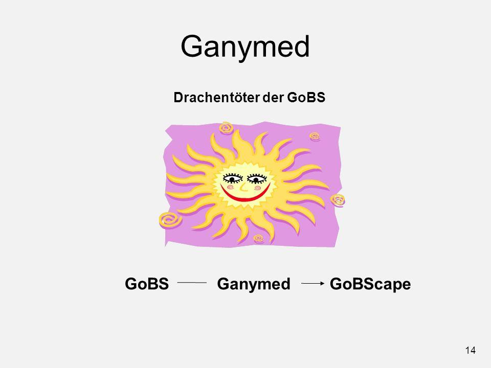 14 Ganymed GoBSGoBScapeGanymed Drachentöter der GoBS