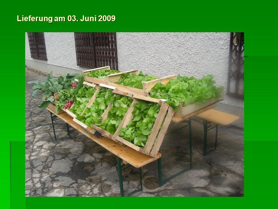 Lieferung am 10. Juni 2009