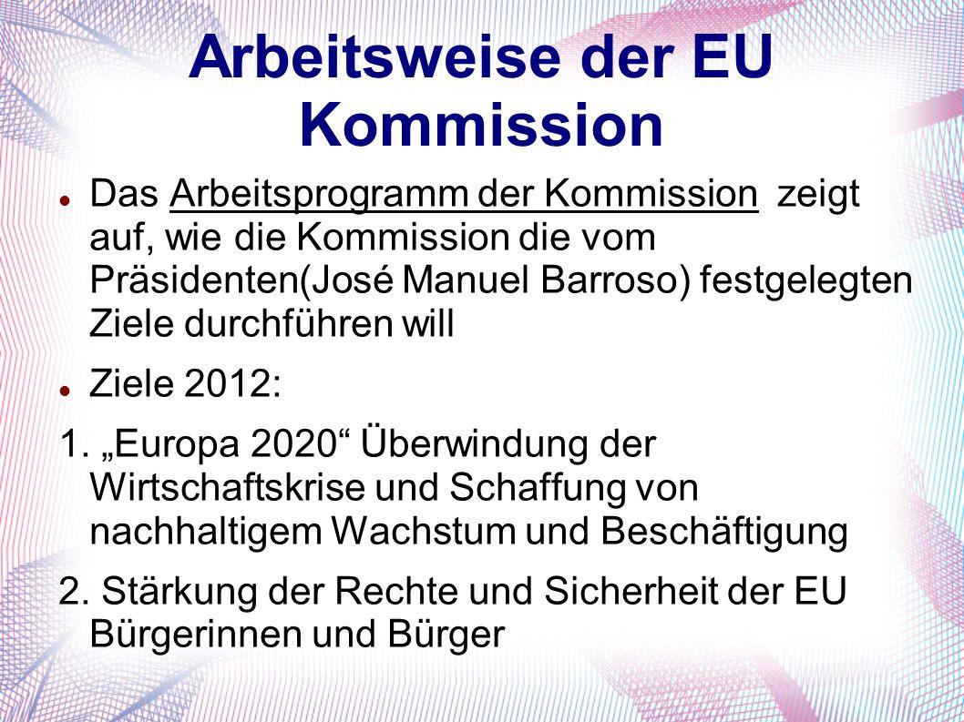 Arbeitsweise der EU Kommission Das Arbeitsprogramm der Kommission zeigt auf, wie die Kommission die vom Präsidenten(José Manuel Barroso) festgelegten