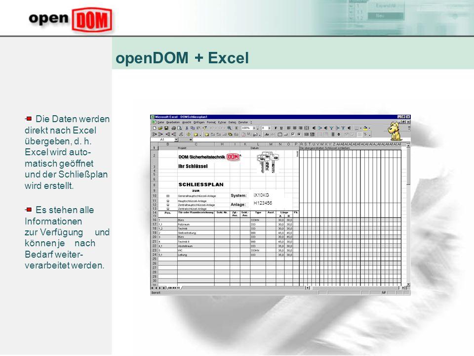 Die Daten werden direkt nach Excel übergeben, d.h.