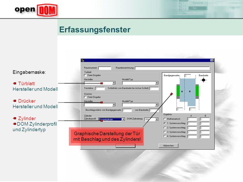 Erfassungsfenster Eingabemaske: Türblatt Hersteller und Modell Graphische Darstellung der Tür mit Beschlag und des Zylinders.