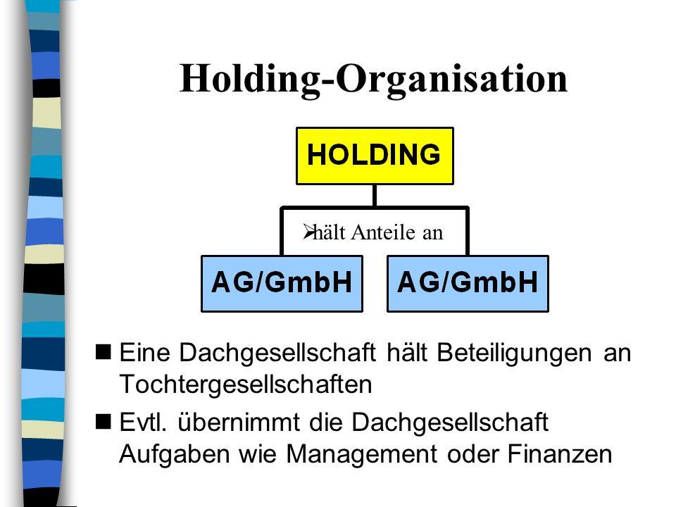 2.3 Gründung einer Holding- SE