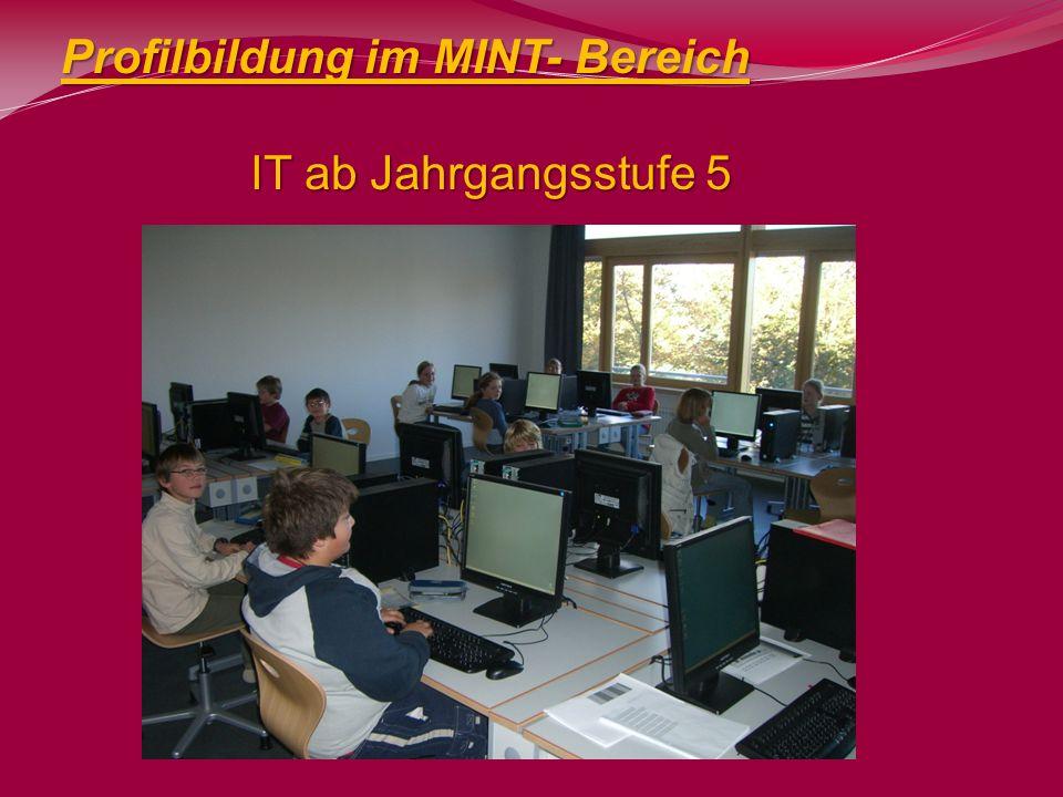 Profilbildung im MINT- Bereich IT ab Jahrgangsstufe 5