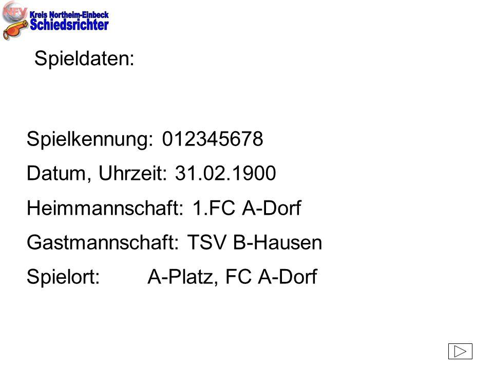 Spieldaten: Spielkennung: 012345678 Datum, Uhrzeit: 31.02.1900 Heimmannschaft: 1.FC A-Dorf Gastmannschaft: TSV B-Hausen Spielort: A-Platz, FC A-Dorf