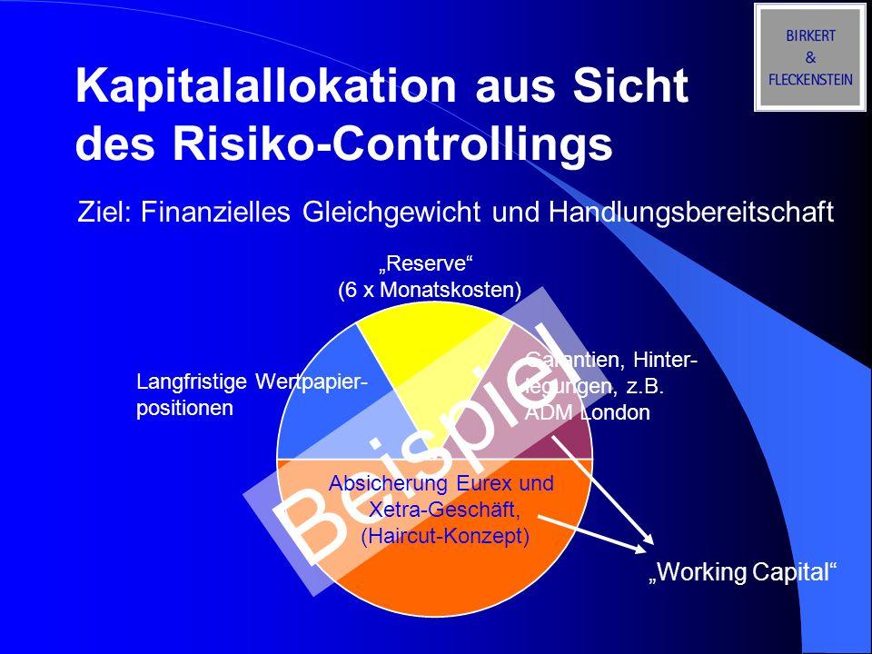 Beispiel Kapitalallokation aus Sicht des Risiko-Controllings Ziel: Finanzielles Gleichgewicht und Handlungsbereitschaft Langfristige Wertpapier- posit