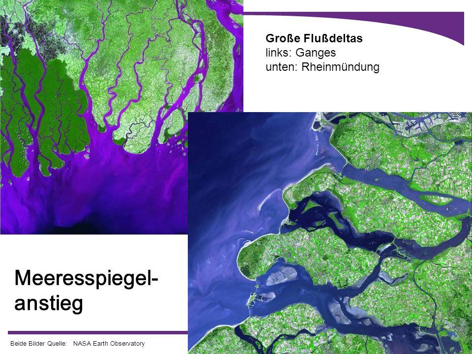 15 Große Flußdeltas links: Ganges unten: Rheinmündung Beide Bilder Quelle: NASA Earth Observatory Meeresspiegel- anstieg