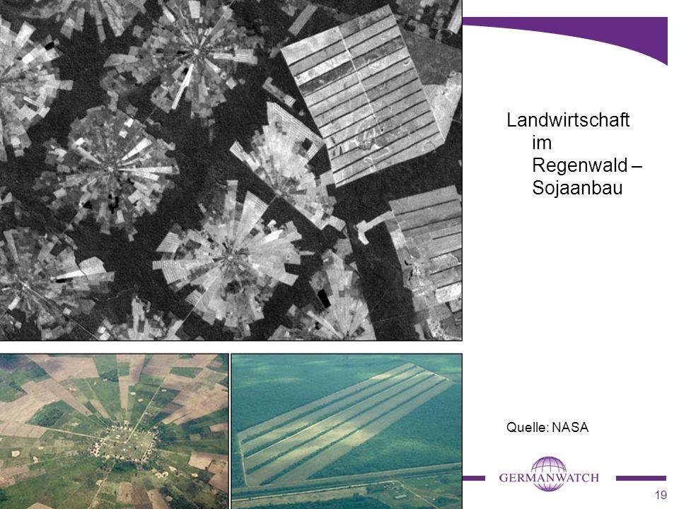 19 Landwirtschaft im Regenwald – Sojaanbau Quelle: NASA