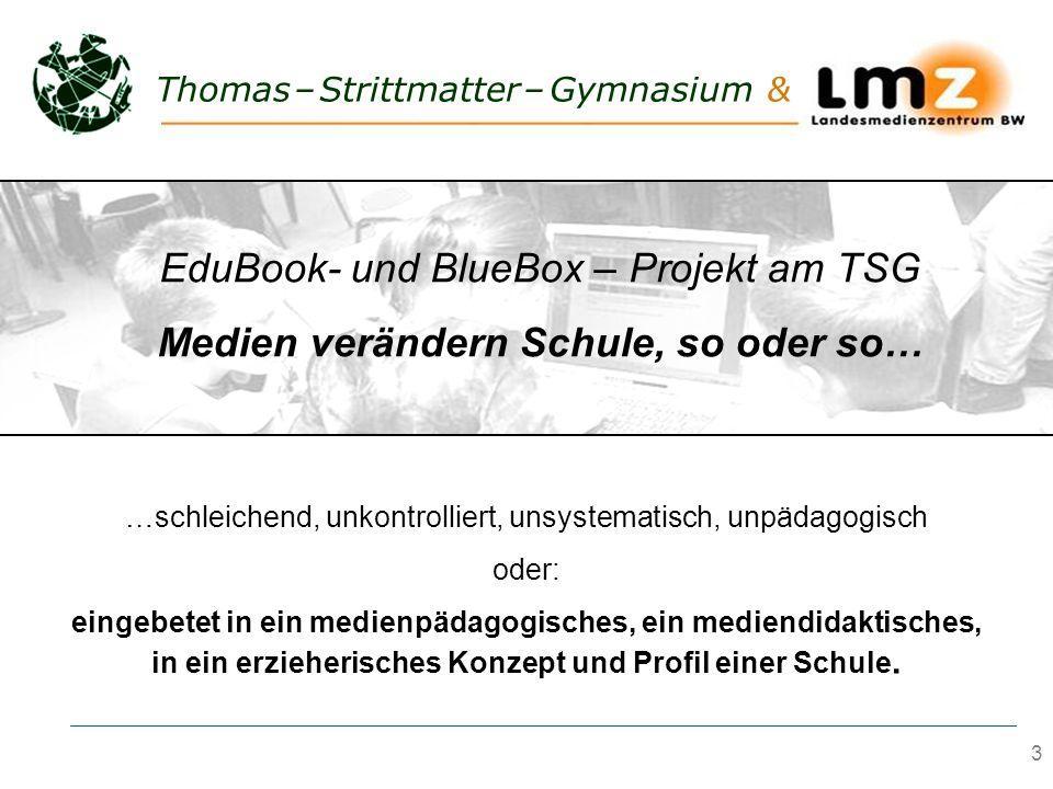 3 Thomas – Strittmatter – Gymnasium & …schleichend, unkontrolliert, unsystematisch, unpädagogisch oder: eingebetet in ein medienpädagogisches, ein med