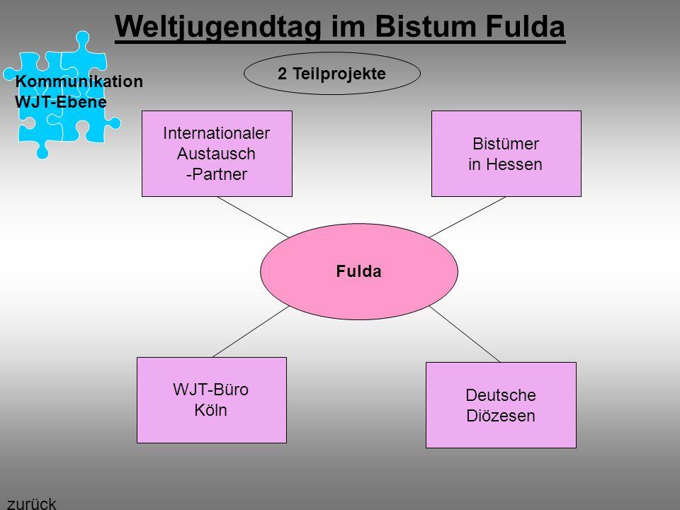 Weltjugendtag im Bistum Fulda Kommunikation WJT-Ebene Fulda Internationaler Austausch -Partner Bistümer in Hessen WJT-Büro Köln Deutsche Diözesen 2 Te