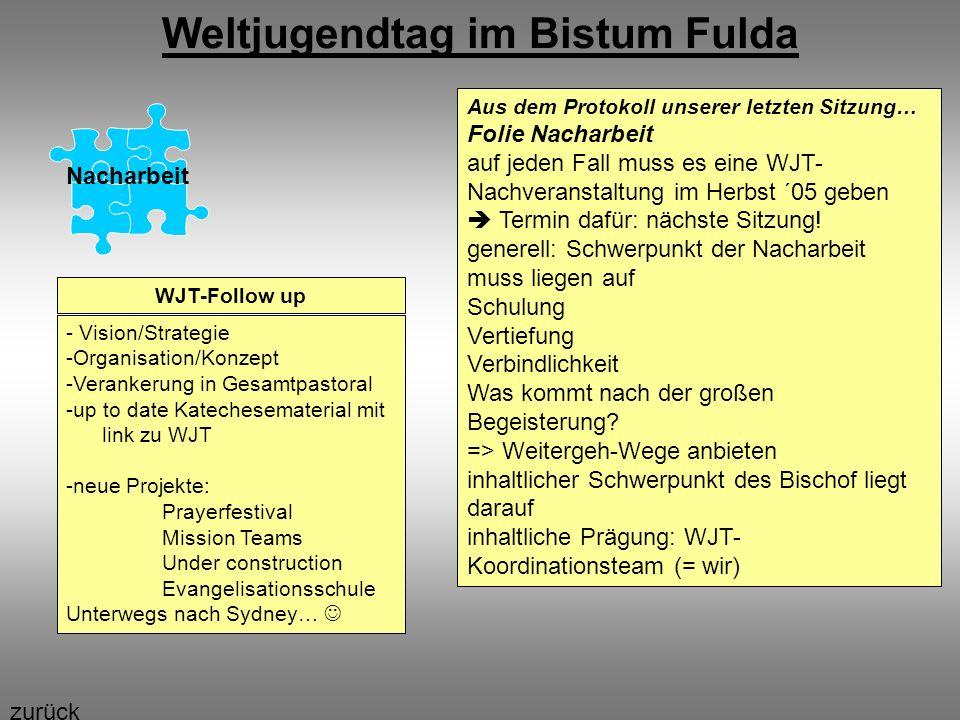 Weltjugendtag im Bistum Fulda Nacharbeit WJT-Follow up - Vision/Strategie -Organisation/Konzept -Verankerung in Gesamtpastoral -up to date Katechesema