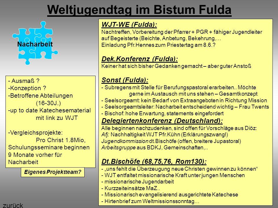 Weltjugendtag im Bistum Fulda Nacharbeit WJT-WE (Fulda): Nachtreffen, Vorbereitung der Pfarrer + PGR + fähiger Jugendleiter auf Begeisterte (Beichte,