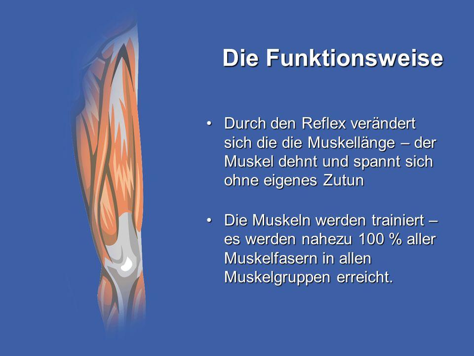 Die Funktionsweise Durch den Reflex verändert sich die die Muskellänge – der Muskel dehnt und spannt sich ohne eigenes ZutunDurch den Reflex verändert