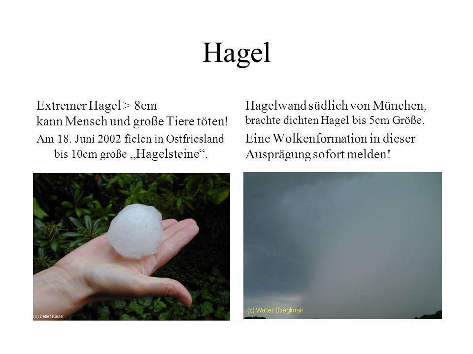 Hagel Hagel ab 1,5 cm Korngröße führt zu Schäden an schwächeren Glasdächern (z.B. Gewächshäusern). Ab dieser Größe immer melden! großer Hagel ( 4,5cm,