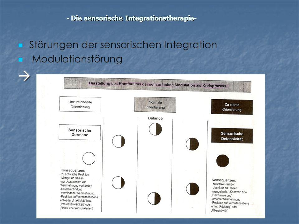 Störungen der sensorischen Integration Modulationstörung - Die sensorische Integrationstherapie-