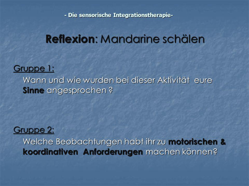 Reflexion : Mandarine schälen Gruppe 1: Wann und wie wurden bei dieser Aktivität eure Sinne angesprochen ? Gruppe 2: Welche Beobachtungen habt ihr zu