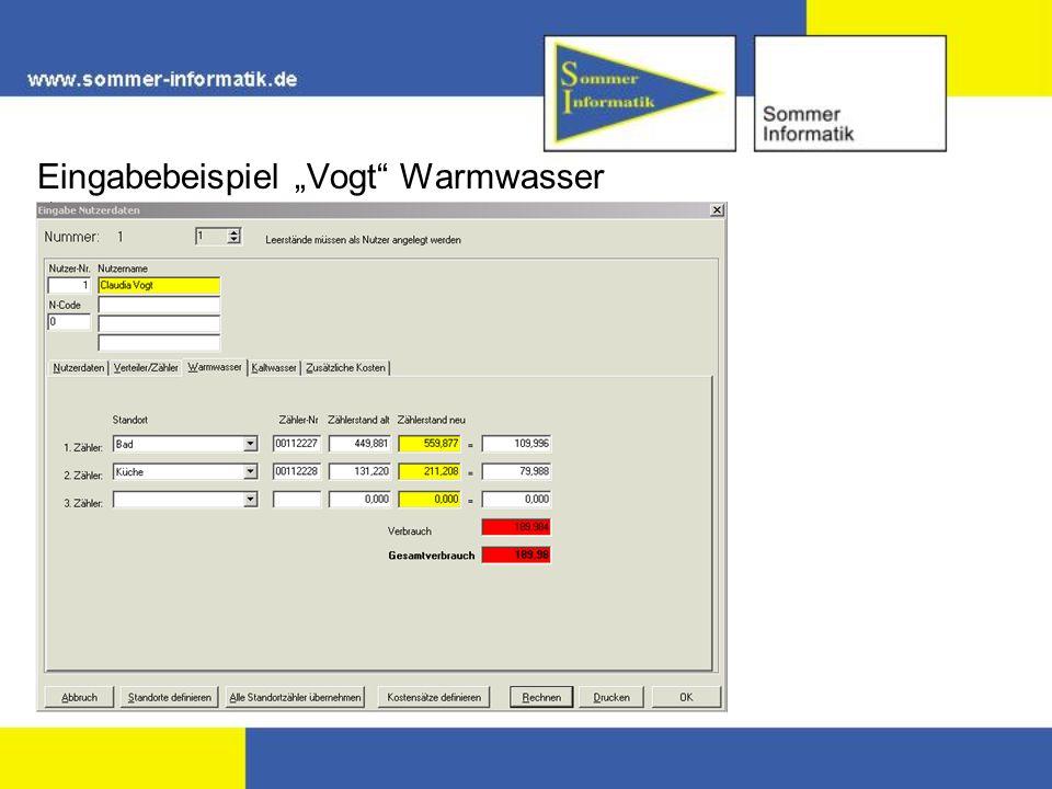 Eingabebeispiel Vogt Warmwasser