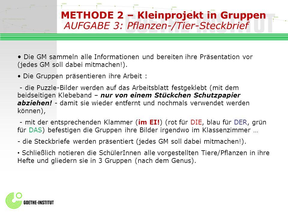 METHODE 2 – Kleinprojekt in Gruppen AUFGABE 3: Pflanzen-/Tier-Steckbrief Die GM sammeln alle Informationen und bereiten ihre Präsentation vor (jedes G