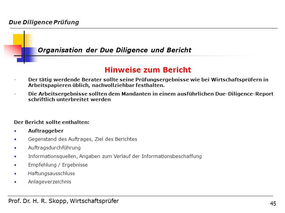 45 Prof. Dr. H. R. Skopp, Wirtschaftsprüfer Due Diligence Prüfung Prof. Dr. H. R. Skopp, Wirtschaftsprüfer Hinweise zum Bericht -Der tätig werdende Be