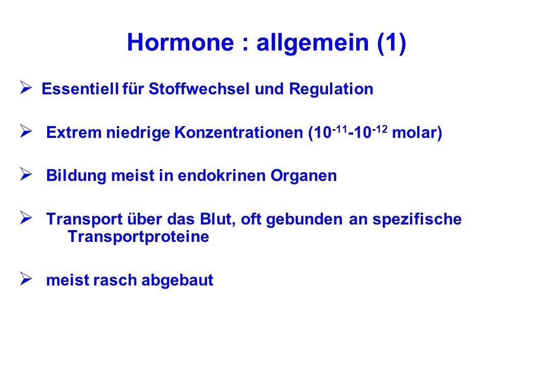 Hormone : allgemein (1) Essentiell für Stoffwechsel und Regulation Extrem niedrige Konzentrationen (10 -11 -10 -12 molar) Bildung meist in endokrinen