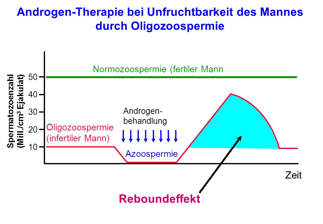 Normozoospermie (fertiler Mann Oligozoospermie (infertiler Mann) 50 40 30 20 10 Zeit Androgen- behandlung Azoospermie Spermatozoenzahl (Mill./cm 3 Eja