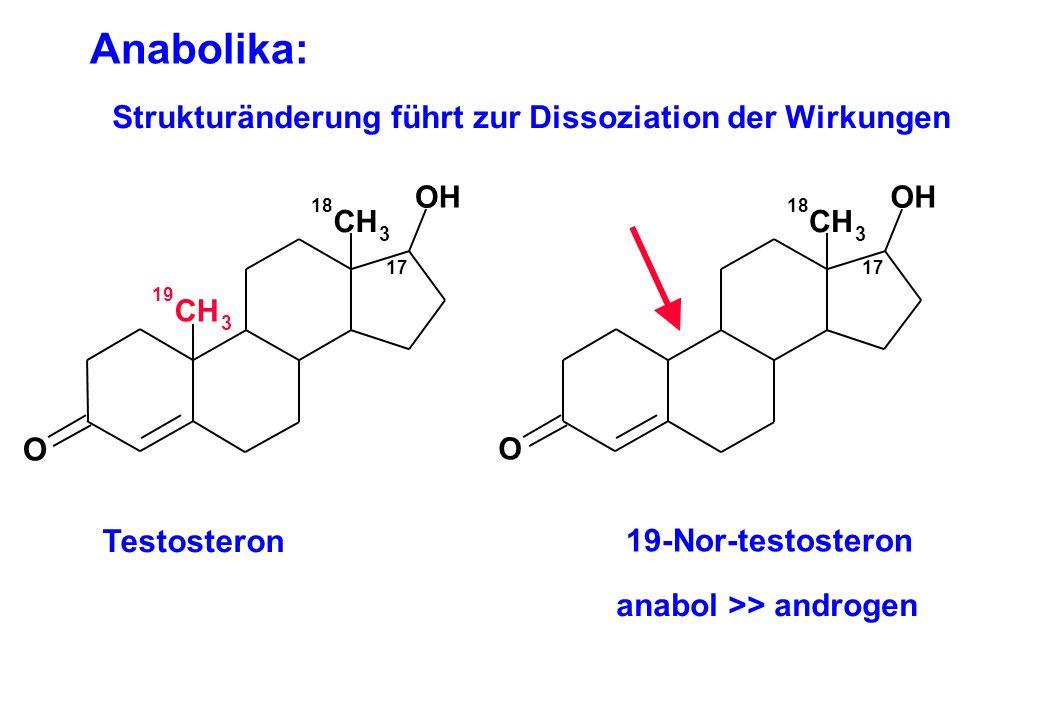 Anabolika: Strukturänderung führt zur Dissoziation der Wirkungen Testosteron 19-Nor-testosteron anabol >> androgen 17 OH O CH 3 19 CH 3 18 17 OH O CH