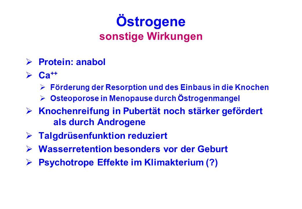 Östrogene sonstige Wirkungen Protein: anabol Ca ++ Förderung der Resorption und des Einbaus in die Knochen Osteoporose in Menopause durch Östrogenmang