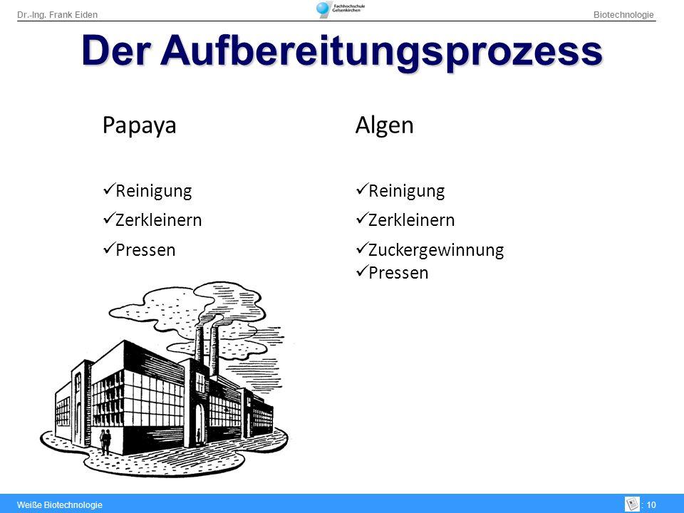 Dr.-Ing. Frank Eiden Biotechnologie Weiße Biotechnologie: 10 Der Aufbereitungsprozess PapayaAlgen Reinigung Zerkleinern Pressen Zuckergewinnung Presse