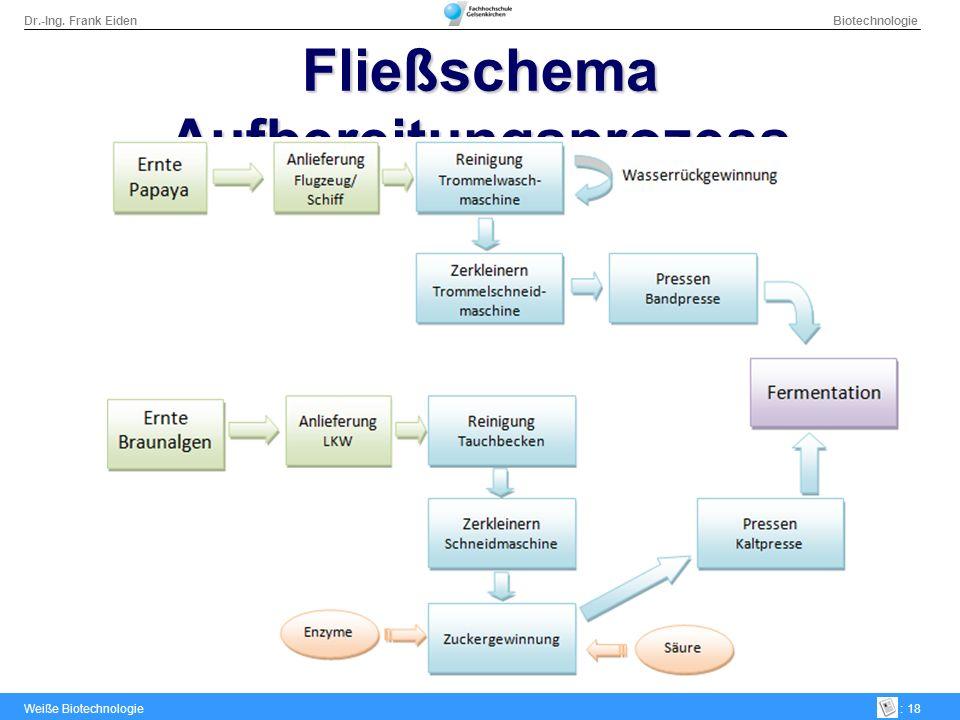 Dr.-Ing. Frank Eiden Biotechnologie Weiße Biotechnologie: 18 Fließschema Aufbereitungsprozess
