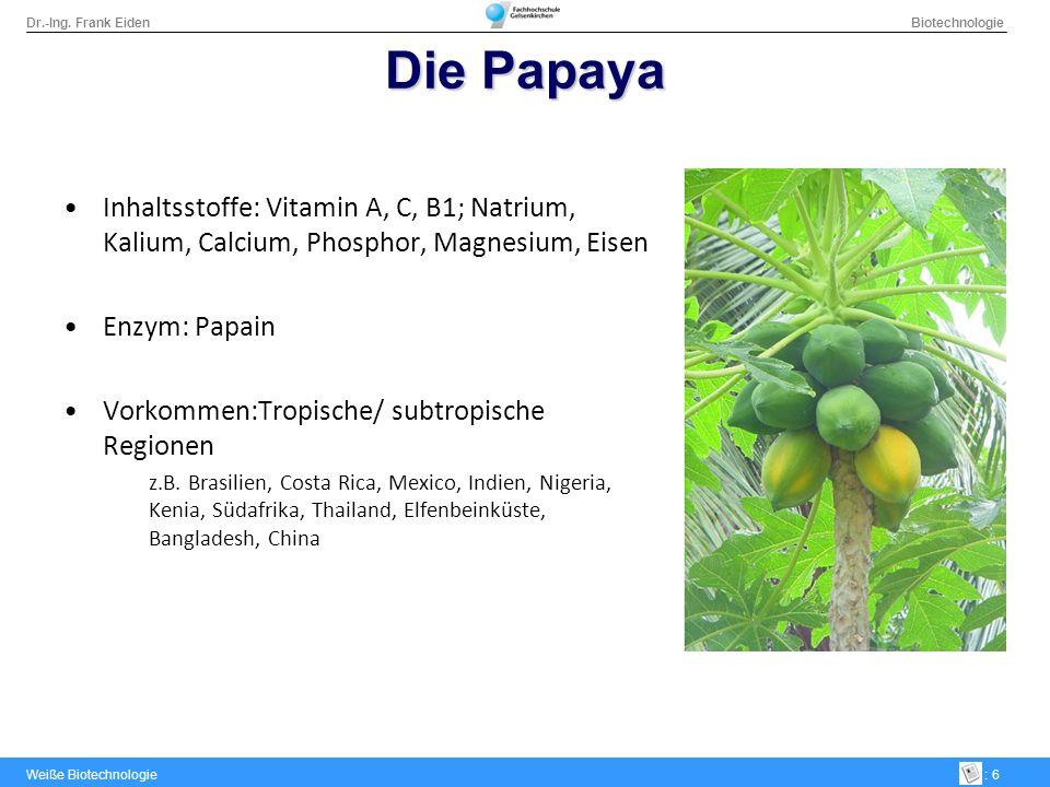 Dr.-Ing. Frank Eiden Biotechnologie Weiße Biotechnologie: 6 Die Papaya Inhaltsstoffe: Vitamin A, C, B1; Natrium, Kalium, Calcium, Phosphor, Magnesium,